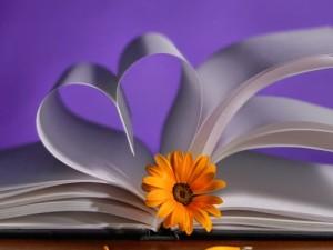 Роман о Любви